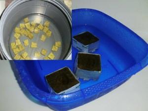 Steinwollwürfel im Wasserbehälter