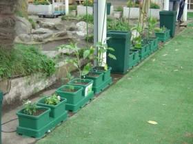 Garten Kit Easy